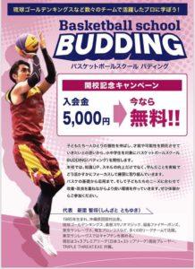 バスケットボールスクールバディング広告